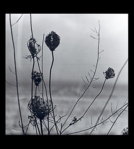 Recondite - Placid (2LP + MP3)
