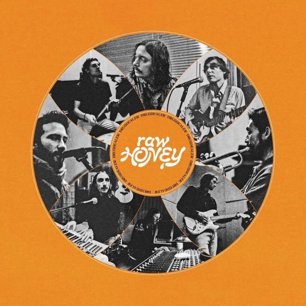 Drugdealer - Raw Honey (LP)