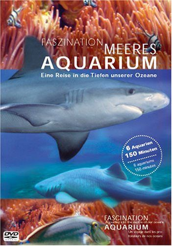 Faszination Meeres Aquarium