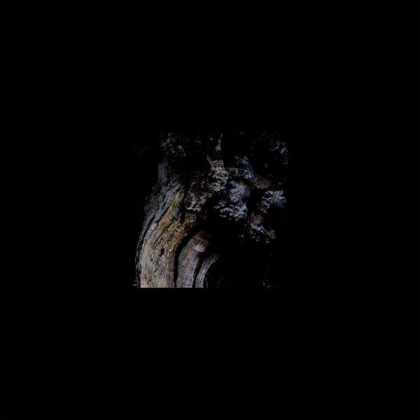 Brunnen - The Garden Of Perpetual Dreams (LP)