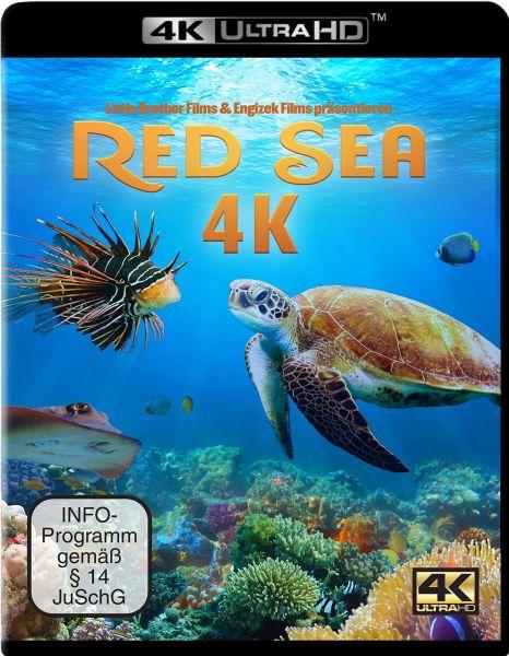 Red Sea (4K UHD)