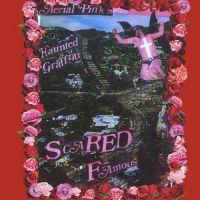 Pink, Ariel - Scared Famous / FF (2LP)